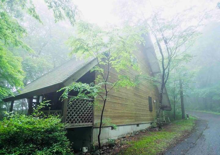 小川のせせらぎ、小鳥のさえずり、ハイランドパーク至近。朝霧に煙る那須の休日。