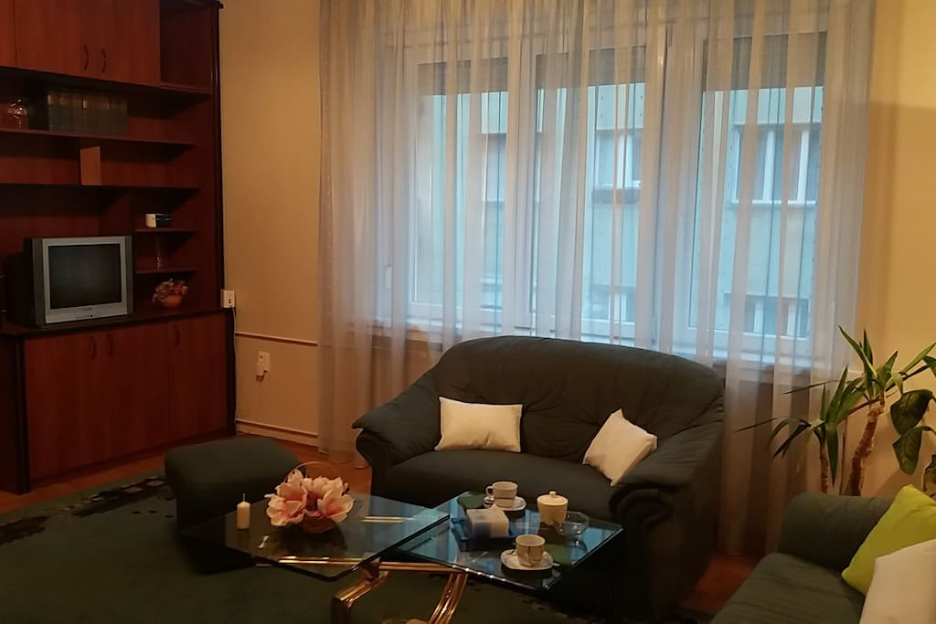 Living room window