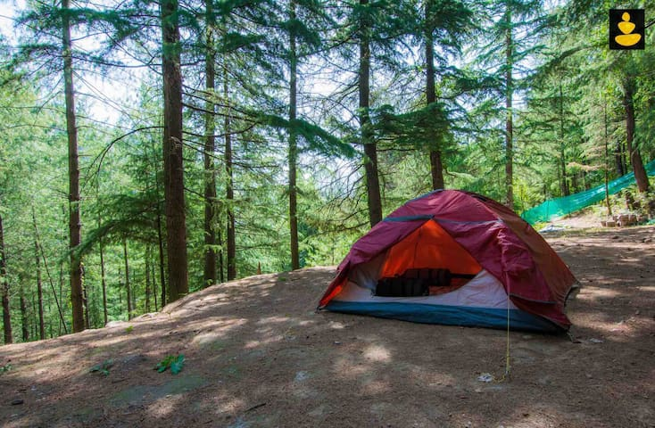 Tent stay| Ojuven by LivingStone