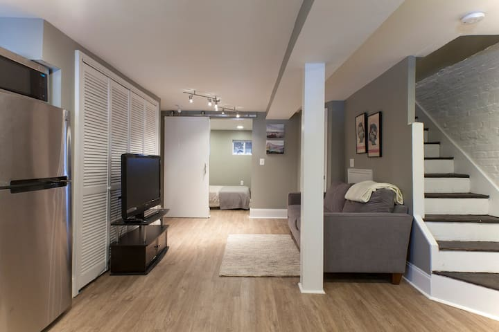Modern 1 Bed English Basement In Mount Pleasant!