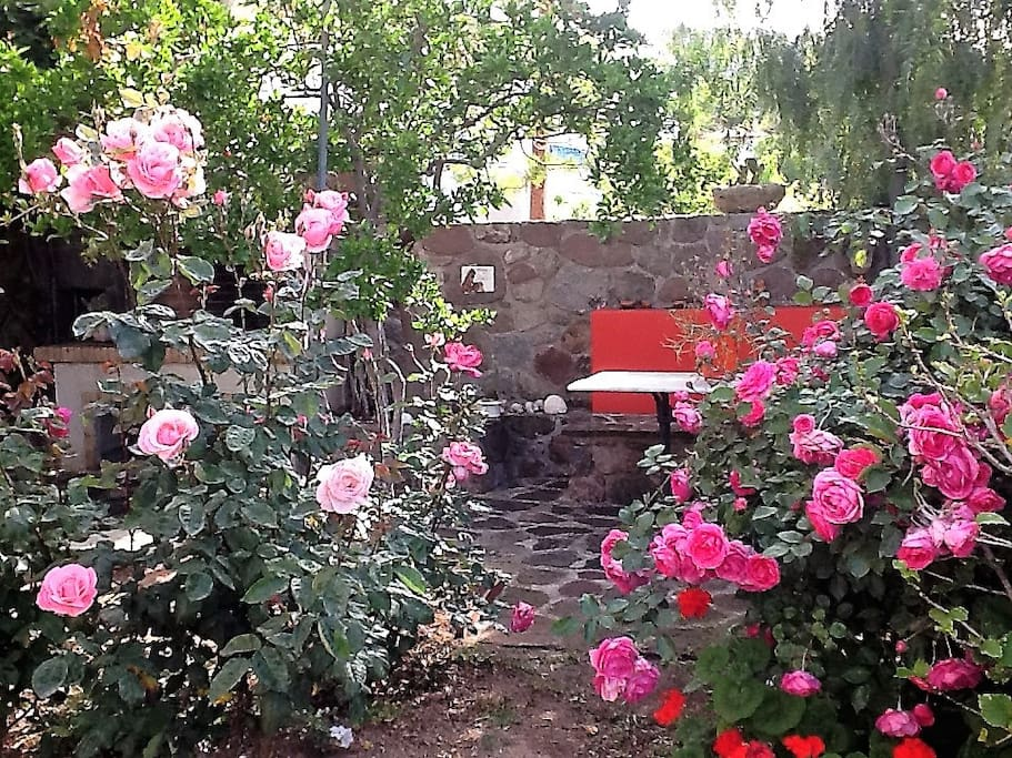 FLOWERED GARDEN-SITTING AREA
