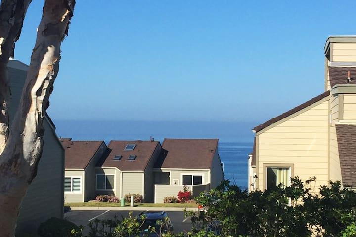 Seabluff on the coast at  beautiful  Encinitas