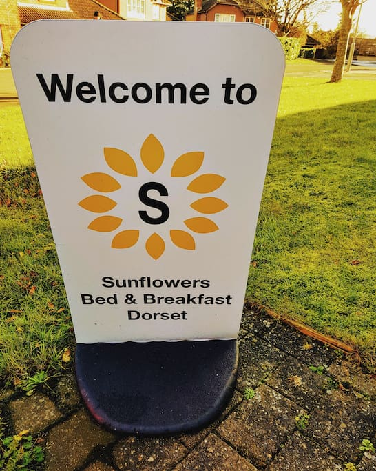 Welcome to Sunflowers!