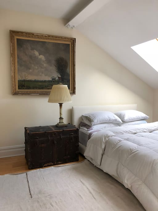 Comfy queen and skylight in private bedroom