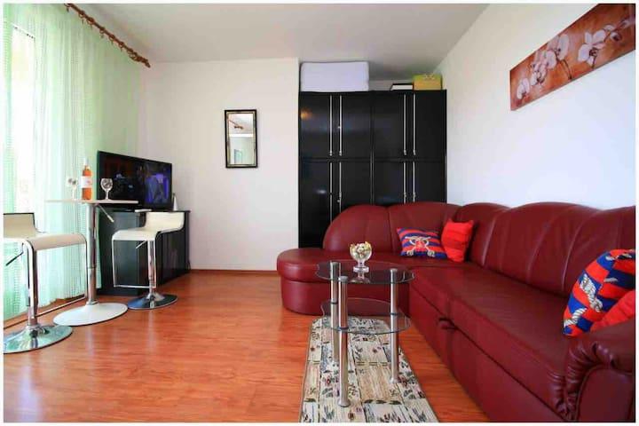 Apartman Višnja