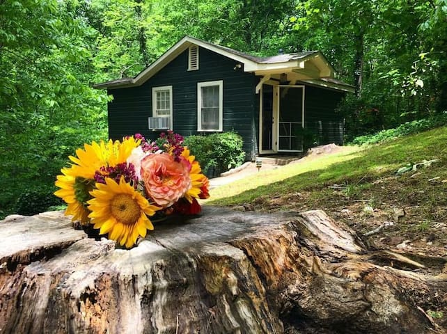 Scenic Green Cottage minutes from Buckhead