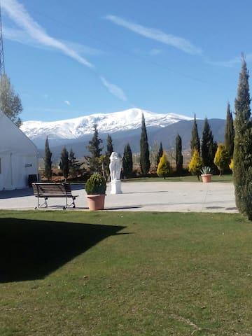 CASA RURAL ESTILO HOTEL RURAL - Albuñan  - Villa