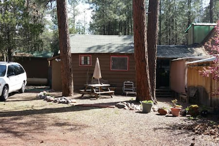 Small Pet-friendly, Private, Furnished Cabin