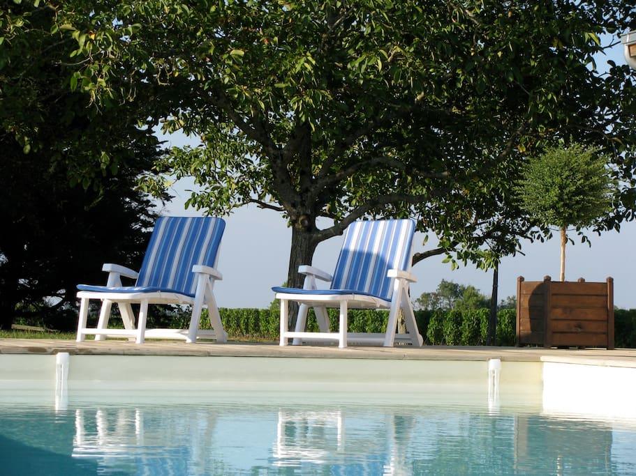 Notre piscine extérieure chauffée à partager avec l'ensemble des hôtes