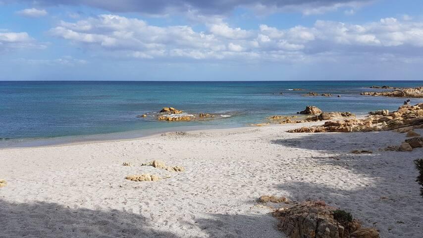 Villa Pina, sulla spiaggia e nel verde