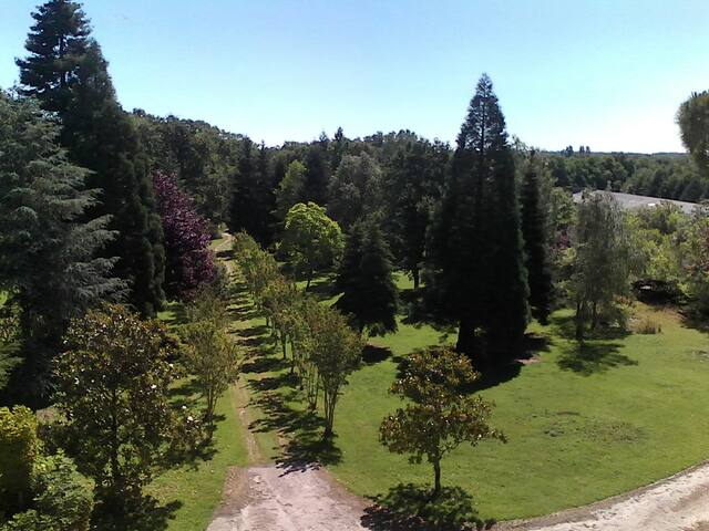 Parc de la propriété