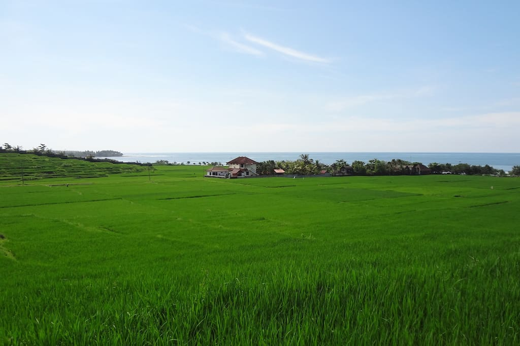 Medewi Manor Surounded by Rice paddies and Medewi Point 800 metres away