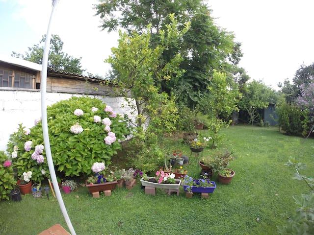Cuarto individual casa con gran jardín PUC (1)