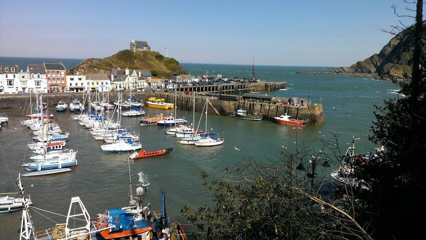Ilfracombe - 10 bed Victorian house of character - Ilfracombe - Talo
