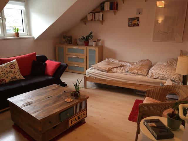 Gemütliche Dachgeschosswohnung/Cosy flat