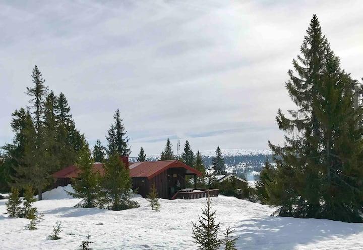 Hyggelig hytte sentralt på populære Sjusjøen
