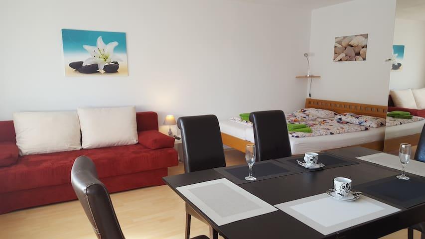 Ferienwohnung-Bruckenfeld, privat