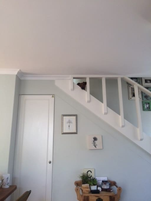 Upstairs bedrooms