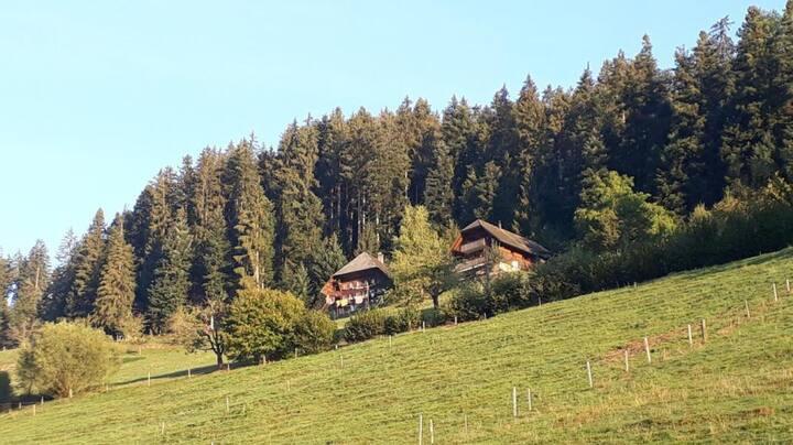 Ferien auf dem Biohof Klanghof Vogelsang Emmenmatt