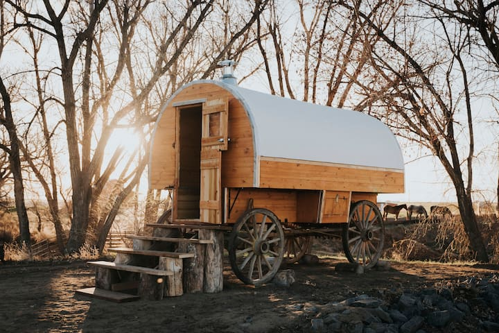 Glamping Shepard's Wagon on Colorado Horse Ranch