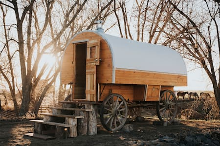 Glamping Wagon on Colorado Horse Ranch