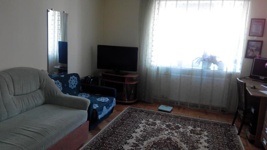 Уютная комната - Uzhhorod - Huoneisto