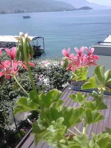 Orhidea House - Ohrid - House