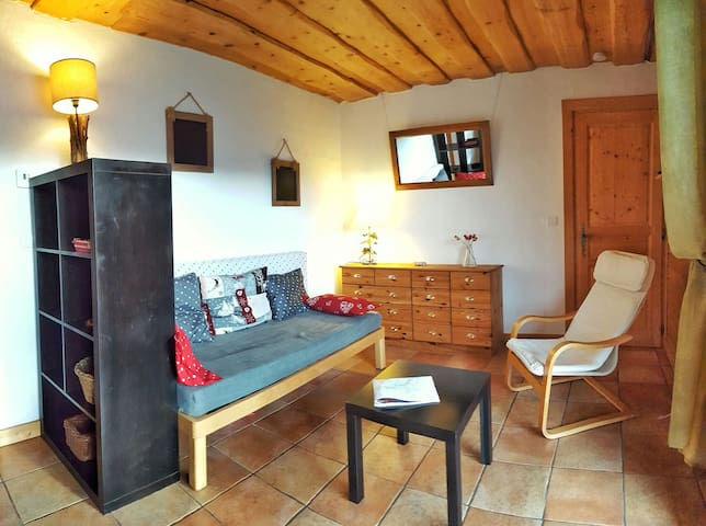 Spacious and sunny 2 rooms flat, Mont-Blanc view