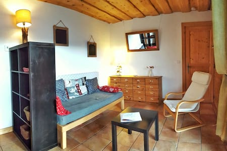 Spacious and sunny 2 rooms flat, Mont-Blanc view - Passy
