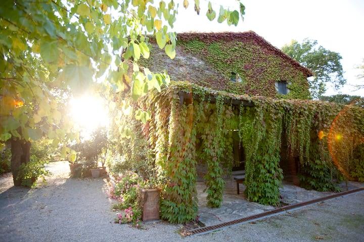 Le Diacce Farmhouse
