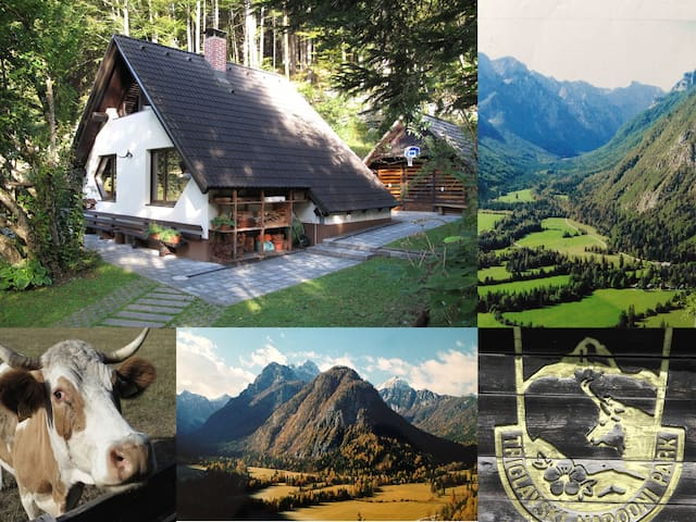 Authentic Chalet in Great Mountain Scenery - Zgornja Radovna Mojstrana - Chalet