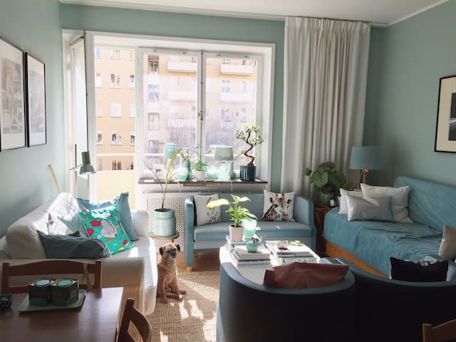 Great room in nice & central flat!