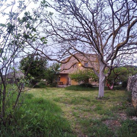Els Arners, Muntanyes de Prades - El Pinetell - Talo