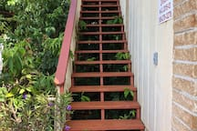Stairs to the front door