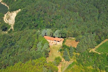 Vidovina: Forest Farmhouse Retreat - Casola Valsenio - 别墅