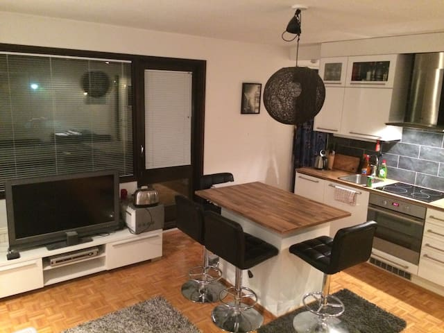 Cozy apartment  near Helsinki center - Espoo