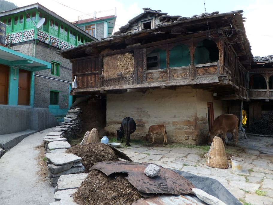 tradition kullu house in the village