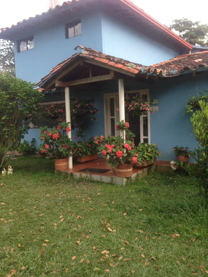 Paraíso Guayacán
