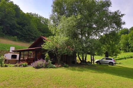 Villa Cinderella -Green oasis of peace near Zagreb