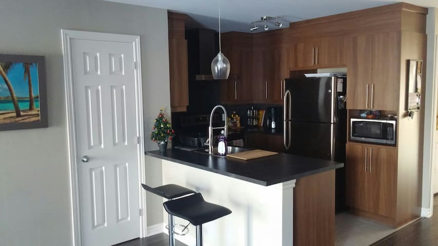 Condo near downtown MONTREAL - Longueuil - Apartment
