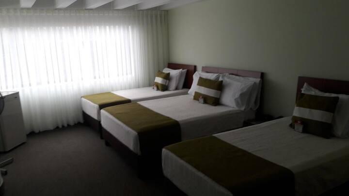 HOTEL NELSONS INN
