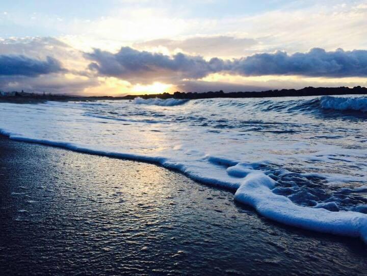 Beachfront Coastal Studio