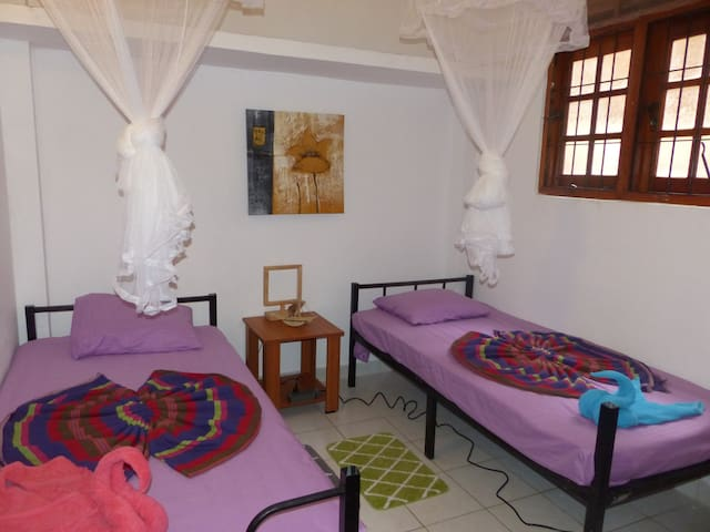 1 room with 2 single beds in a cosy hostel