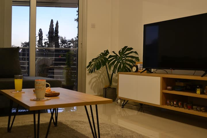 Modern, cosy and new-established flat in Nicosia
