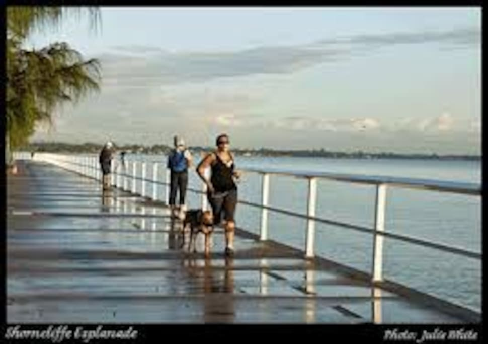 Walking distance to Shorncliffe water front