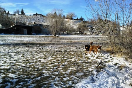 Dog Friendly House Share for Single Travelers - Shelby - Dům