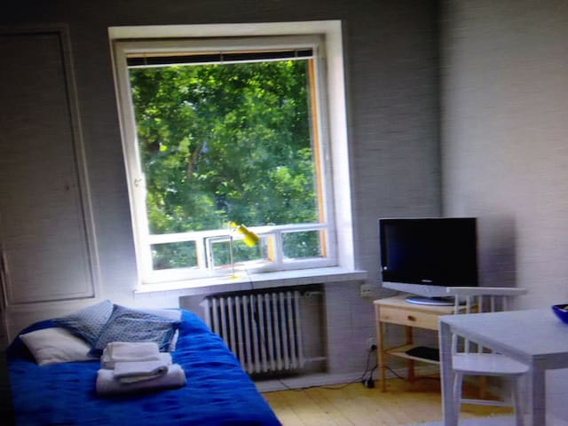 Cozy 30m2 studio in Hakaniemi - 克罗托内 - Pis