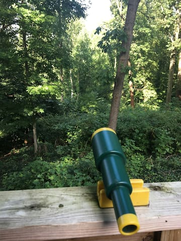 A family of eagles lives about half a mile away down the river. They frequently fly over the treehouse. Get a better look with this telescope. Kidding. This is a play telescope. Kids love it!