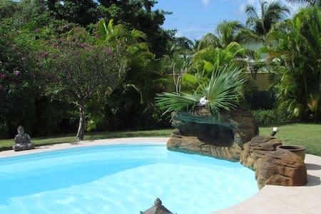 Cottage  F2 Iguana
