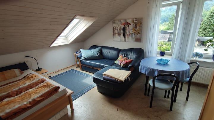 Helles, gemütliches Appartement in  Waldrandlage.